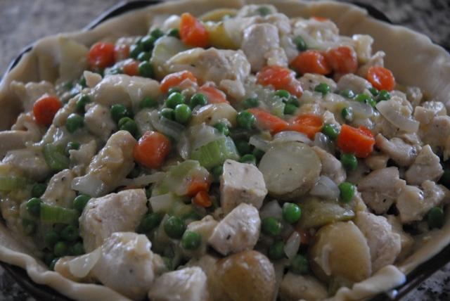 chicken pot pie 14