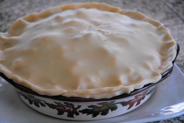 chicken pot pie 15 edited
