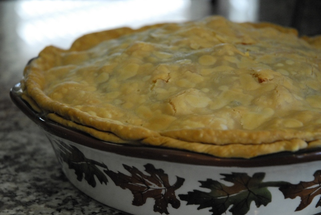 chicken pot pie 16
