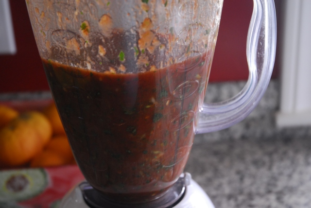 salsa 7