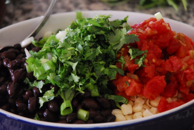 salsa 9