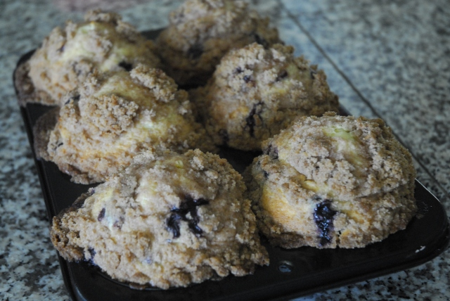 blueberry muffins 13