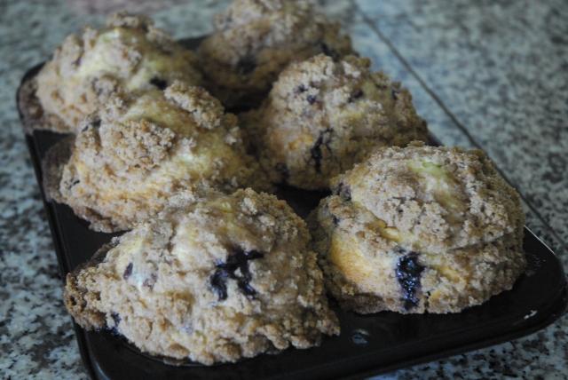 blueberry muffins 13
