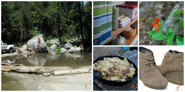 camping collage final