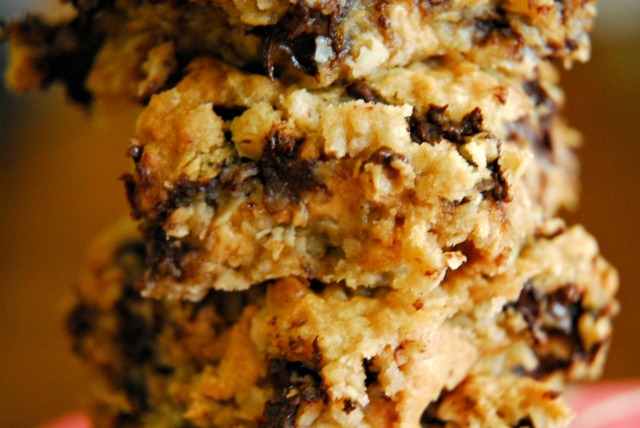 chocolate chip oatmeal bars 12 edited