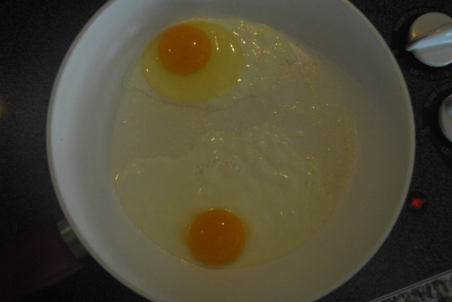 eggs 9-17 2