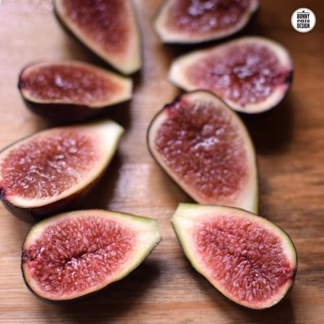 figs-001